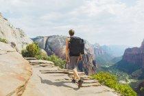 Hombre Senderismo en el parque nacional de Zion - foto de stock