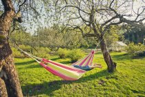 People in hammock at summer, selective focus — Stock Photo
