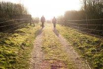 People walking on dirt road between fence — Stock Photo