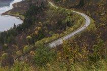 Мальовничим видом сільська дорога в Швеції — стокове фото