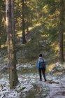 Escursioni donna durante la foresta invernale — Foto stock