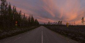 Vue panoramique sur la route forestière au coucher du soleil, comté de Vasterbotten — Photo de stock