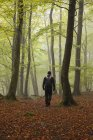 Man hiking in forest, kingdom of sweden — Stock Photo