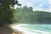Scenic view of sea coast on Trinidad and Tobago — Stock Photo