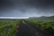 Route de gravier sous les nuages de tempête en Islande — Photo de stock