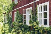 Живописный вид здания в лесу в летнее время — стоковое фото