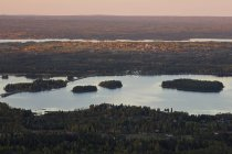 Malerischer Blick auf Fluss und Wald — Stockfoto
