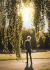 Branches d'arbres avec l'homme en arrière-plan — Photo de stock