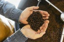 Vista cortada do homem que prende feijões de café, foco seletivo — Fotografia de Stock