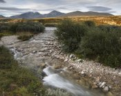 Scenic view of river through Rondane National Park, Norway — Stock Photo