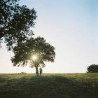 Menino correndo por árvore em campo em Portugal — Fotografia de Stock