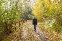 Mature woman walking in forest at autumn — Stock Photo