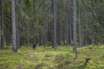 Femme portant panier dans la forêt — Photo de stock
