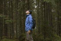 Sendero en busca de bosque, enfoque en primer plano. - foto de stock