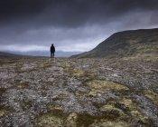 Человек, стоящий в национальном парке Ронни, Норвегия — стоковое фото
