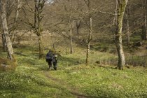 Caminhadas de homens na floresta, foco seletivo — Fotografia de Stock