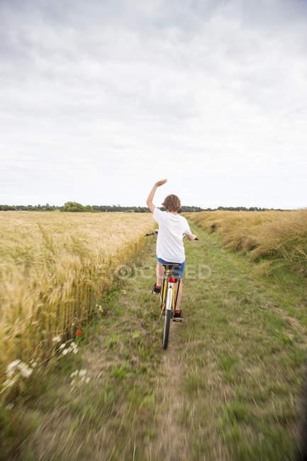 Garçon vélo d'équitation dans le champ de blé — Photo de stock