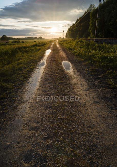 Wet dirt road in sunset light — Stock Photo