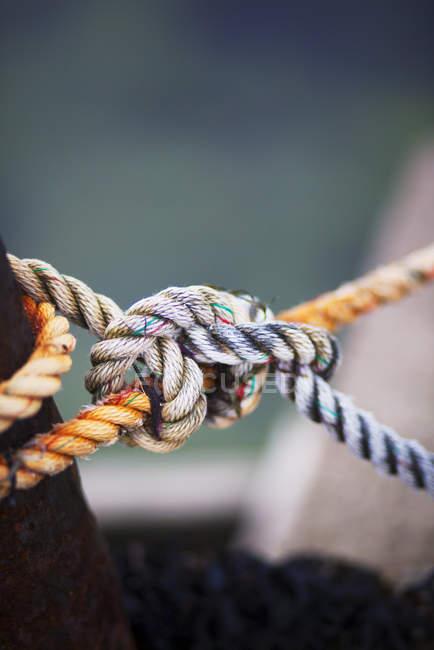Закри мотузки вузлом з defocussed фон — стокове фото