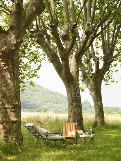 Espreguiçadeiras e mesa pequena sob árvores no jardim — Fotografia de Stock
