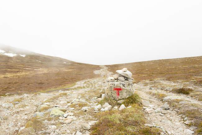 Вид спереди плато горы в тумане — стоковое фото