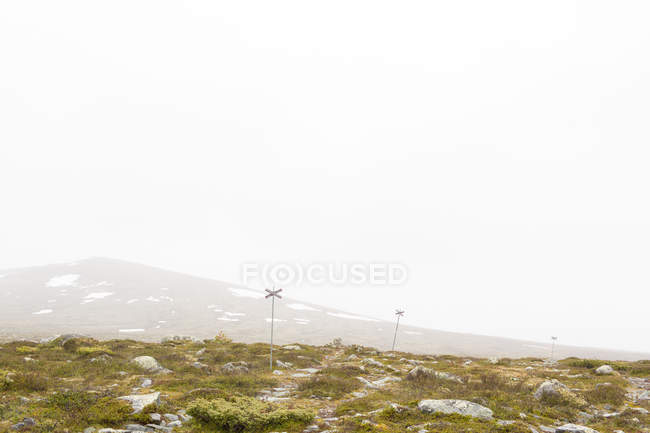 Green grass on mountain plateau in fog — Stock Photo