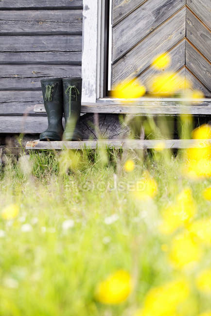 Front view of galoshes on porch of log cabin - foto de stock