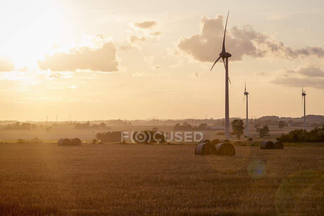 Silhouettes des éoliennes sur le champ au crépuscule — Photo de stock