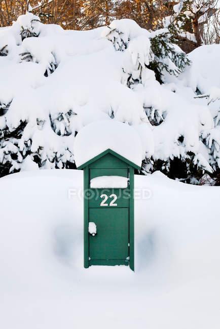 Vista frontale della cassetta postale verde coperto di neve — Foto stock