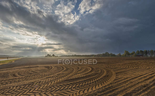 Agricultural landscape under dramatic cloudy sky — Stock Photo