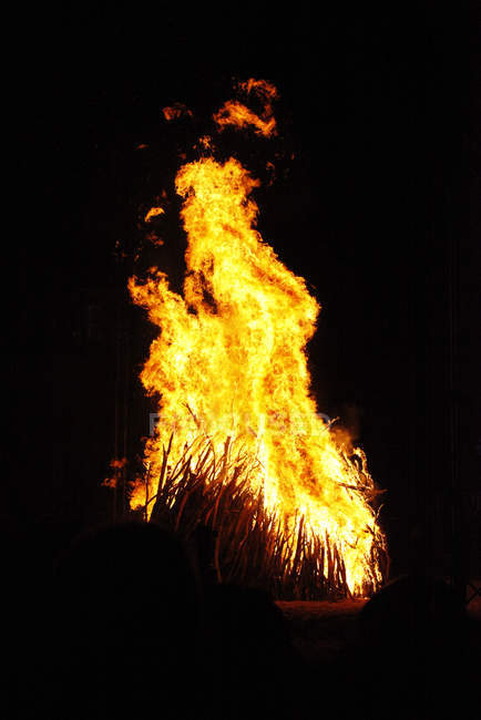 Front view of fire on black background — Fotografia de Stock