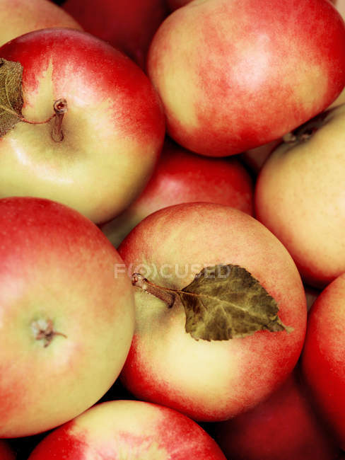 Pile of fresh apples, top view — Stock Photo