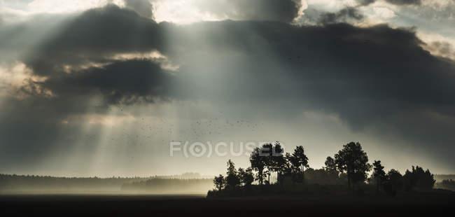 Sunbeams illuminating field from storm clouds — Stock Photo