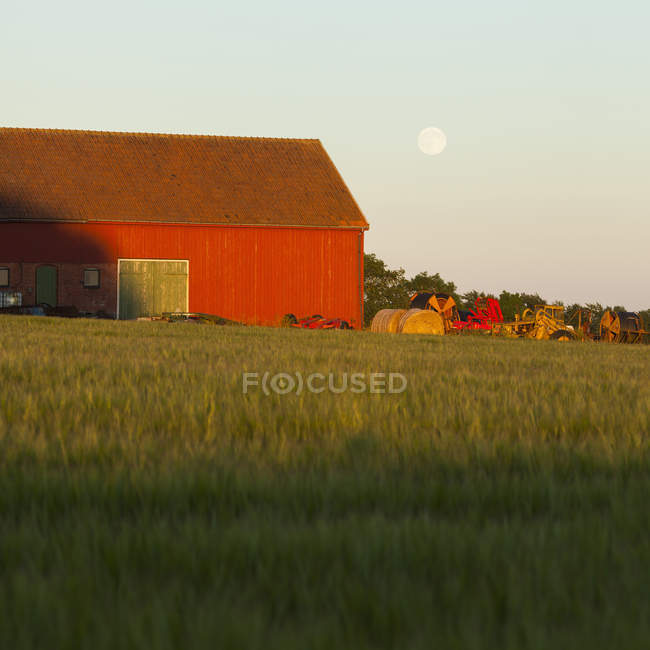 Shed and barley field with moon in sky at dusk — Stock Photo