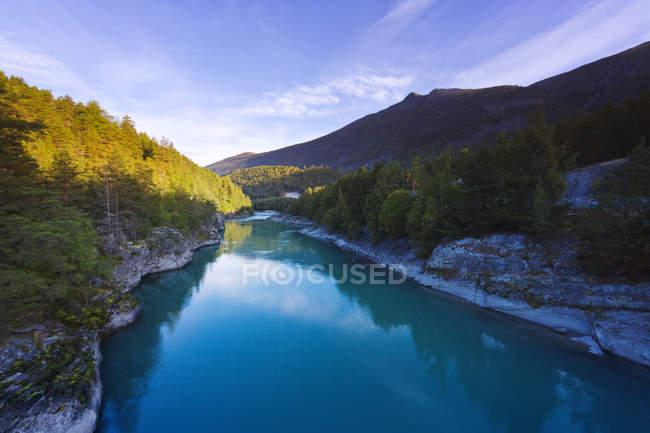 Река и зеленые леса в Sjardalen, Norway — стоковое фото