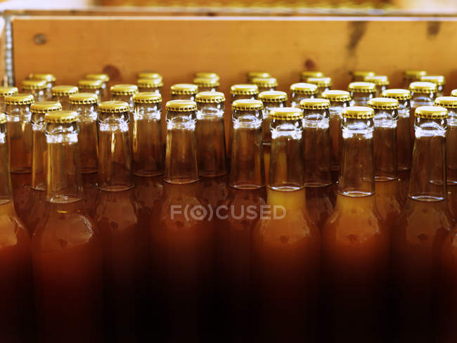 Unlabelled bottles with closed tops and filled with light brown liquid — Stock Photo