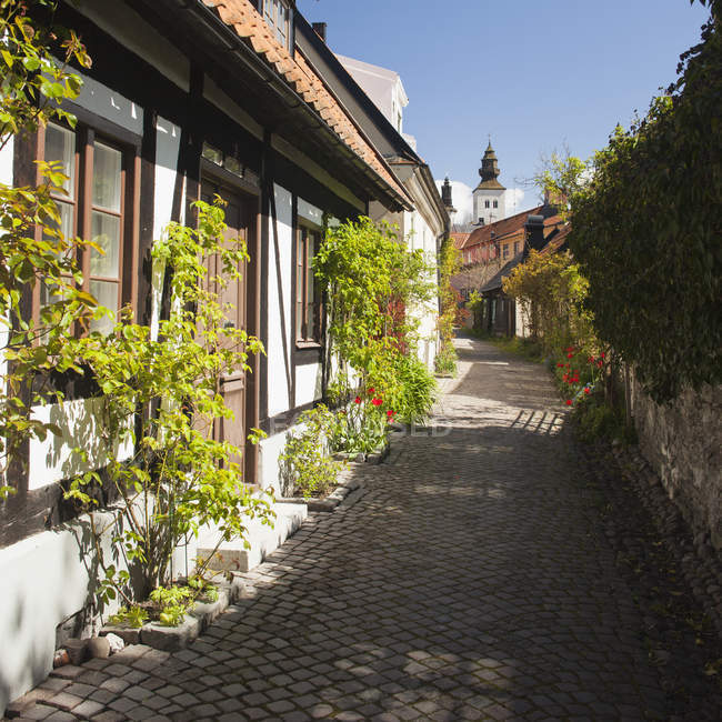 Cobblestone street with small houses in Visby old town — Stock Photo