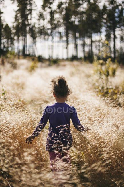 Visão traseira da menina andando em campo — Fotografia de Stock
