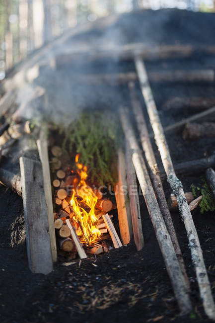 Scenic view of burning fire and logs in kiln — Stock Photo
