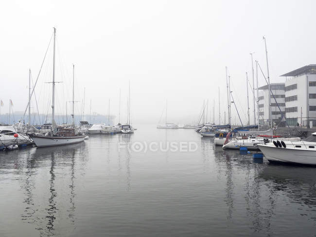 Yachts moored at misty harbor water — Stock Photo