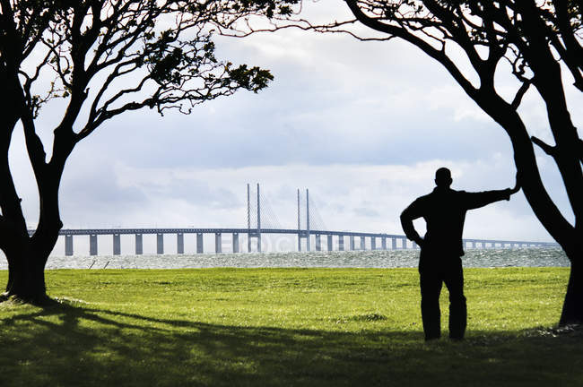 Silhouette of man looking at oresund bridge from distance — Stock Photo
