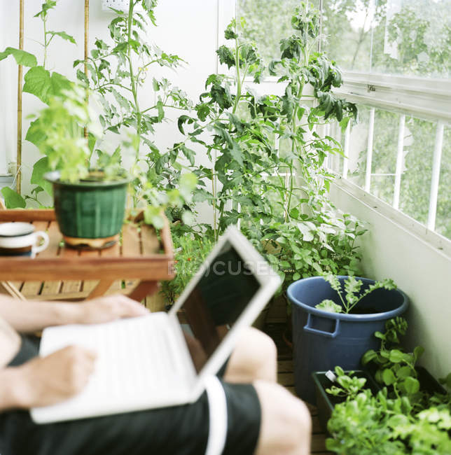 Mid section of man sitting in sun room and using laptop — Stock Photo
