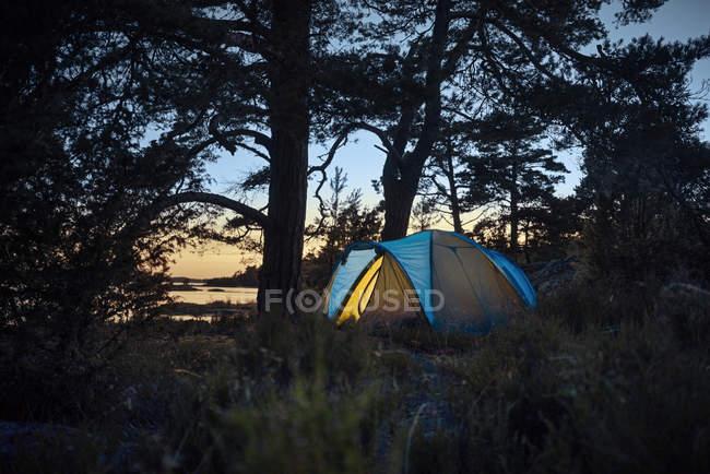 Zelt im Wald bei Sonnenuntergang, selektiven Fokus — Stockfoto