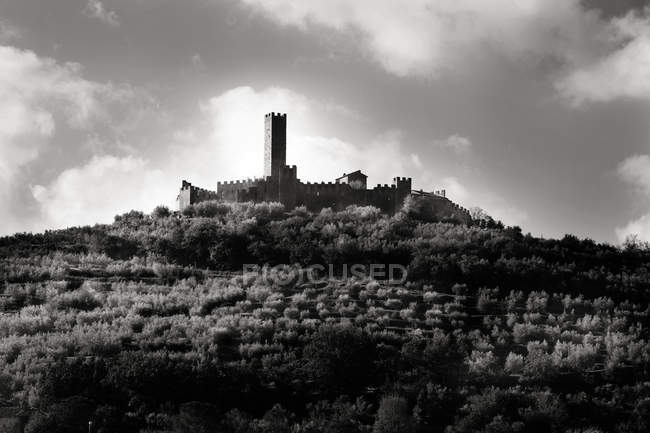 Medieval castle on hill, black and white — Stock Photo