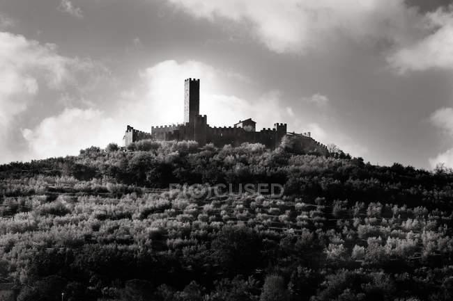Castello medioevale sulla collina, bianco e nero — Foto stock