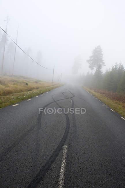 Vista da estrada vazia com marcas de pneu coberto de nevoeiro — Fotografia de Stock
