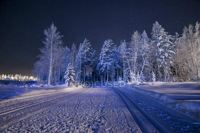 Snowcapped rural road with frozen trees at night — Stock Photo