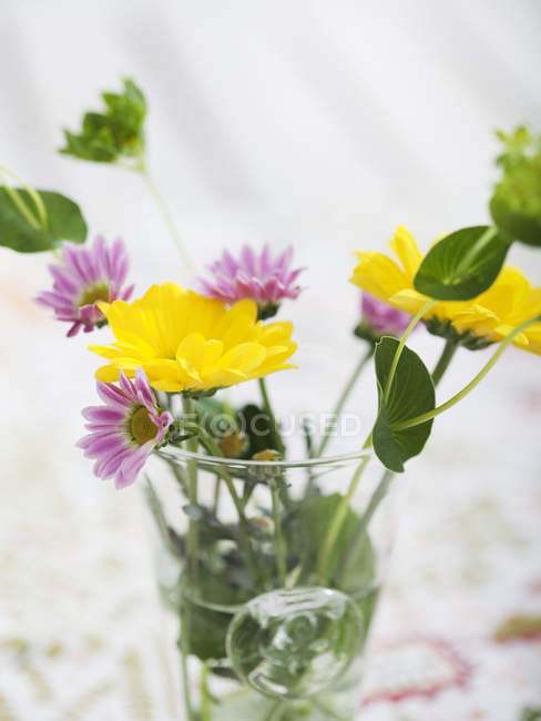 Close up shot of wildflowers in vase — Stock Photo
