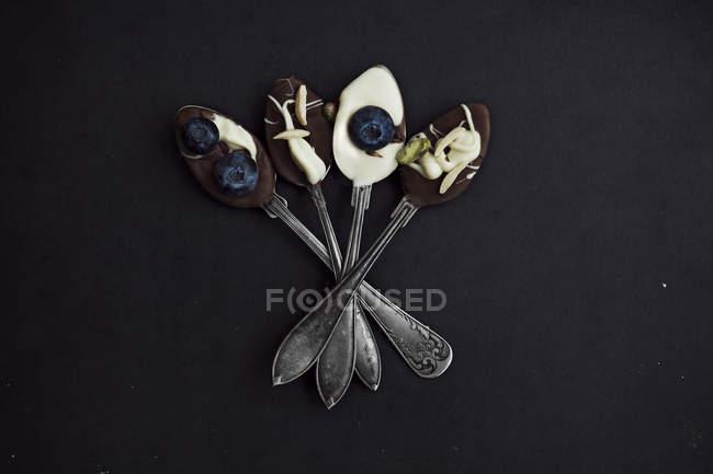 Colheres de sobremesa com chocolate e mirtilos — Fotografia de Stock