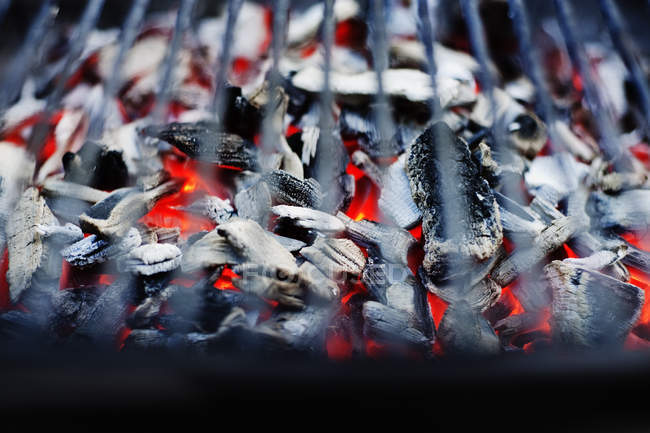 Close up shot of kindling burning in grill — Stock Photo